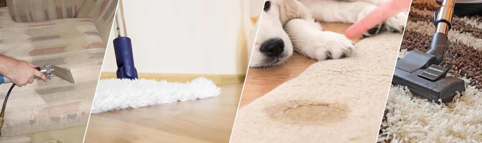 Reliable Carpet Cleaning Westlake Village CA