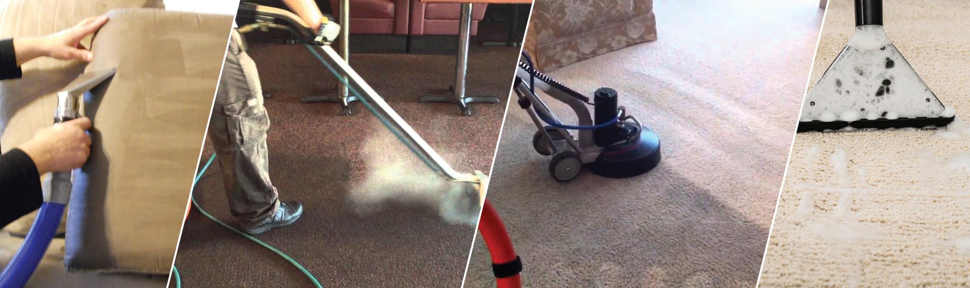 Miracle Carpet Care LLC Farmington MI