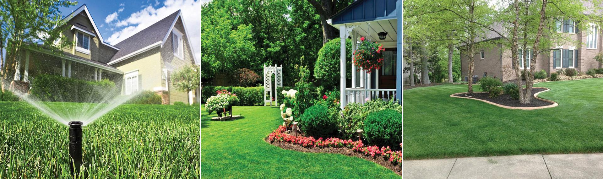 Blossom Gardening & Landscaping Aspen CO