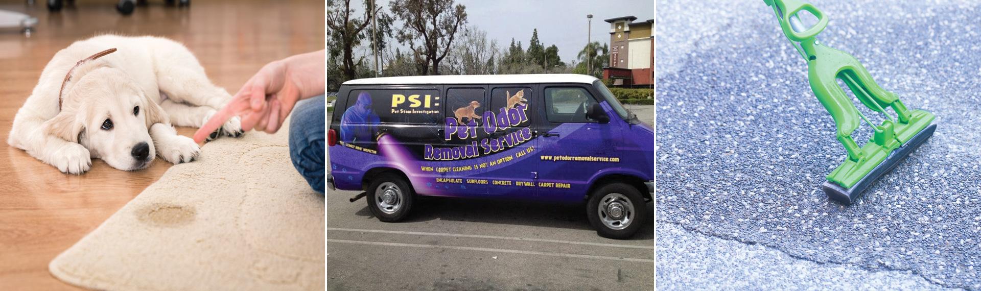 Pet Odor Removal Service Silverado CA