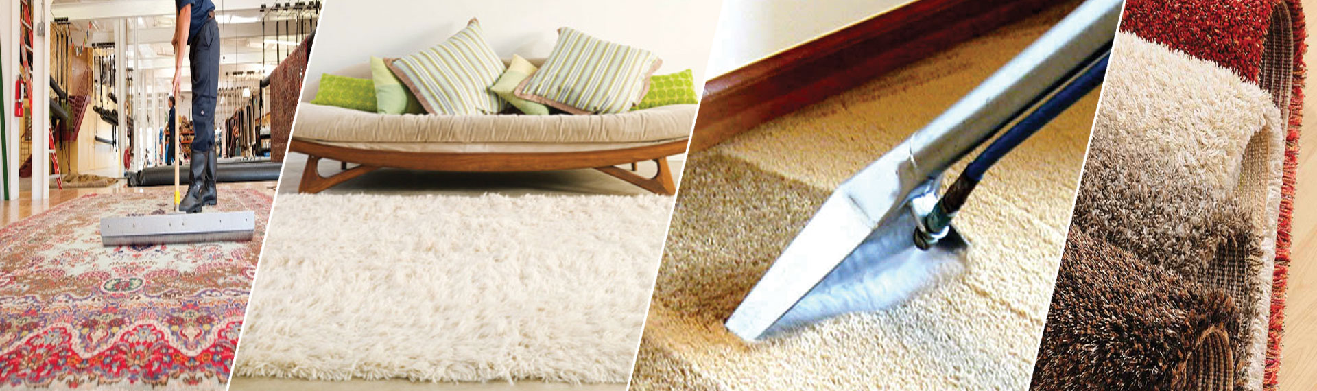 Robert Rug Cleaning Service North Wales PA