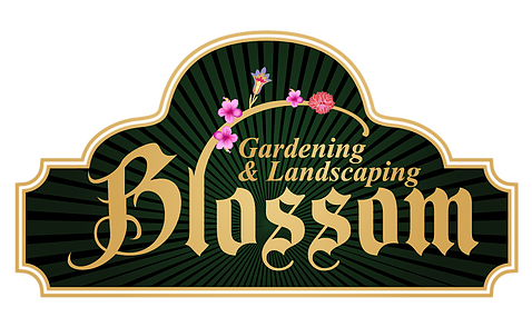 Blossom Gardening & Landscaping Carbondale CO