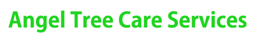Angel Tree Care Services Pflugerville TX