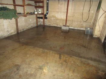 Miller's Water Damage